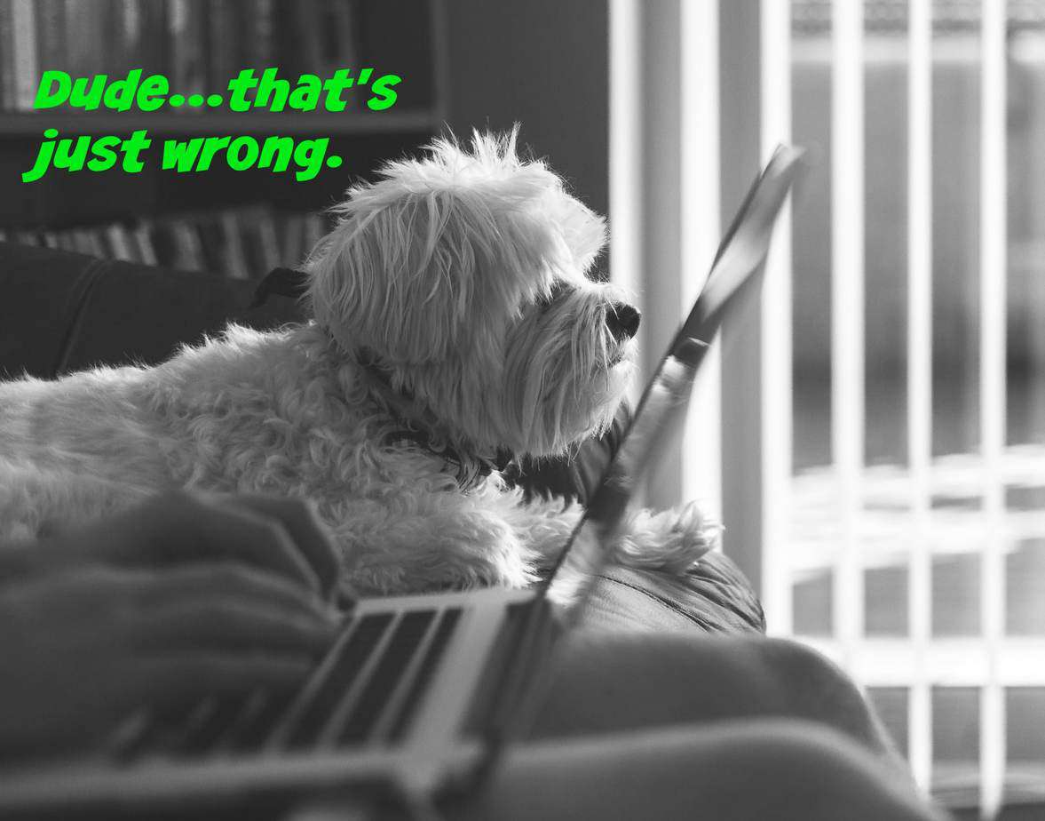 Content marketing mistakes: 9 reasons people hate your site