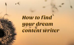 How to find your dream content writer when you don't know what you're doing